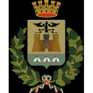 Immagine o logo del Città di Cardano al Campo